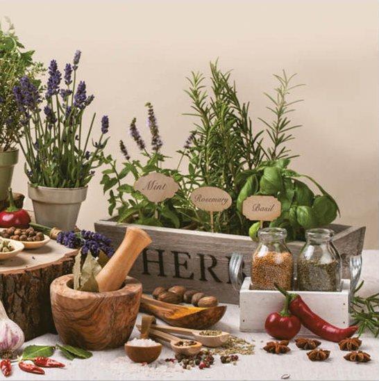 aromaticke-byliny.jpg