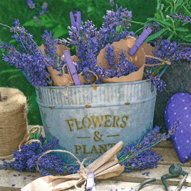 lavender-dekoration.jpg